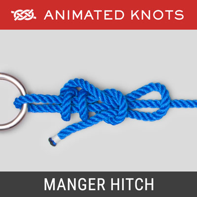 Manger Hitch - quick-release knot to secure a cow to a fence