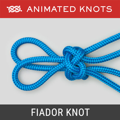 Fiador Knot - keeps the hackamore on the horse's head