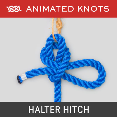 Halter Hitch - Quick release knot to secure a horse